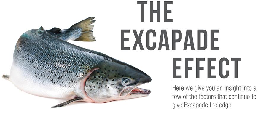 excapade5